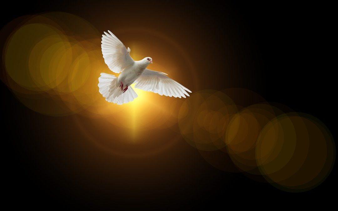 Ô Esprit Saint, Amour du Père et du Fils, Inspirez-moi toujours ce que je dois penser