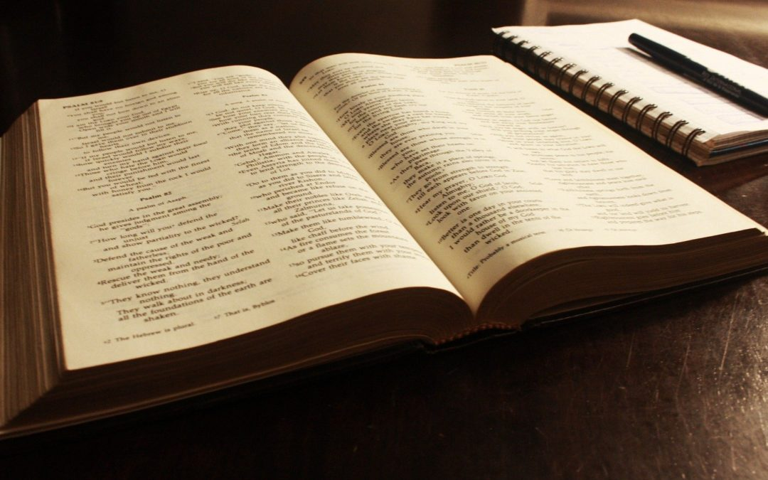 Offre-leur en présent de découvrir la Bible, d'entendre ta Parole, illumine leur chemin de ta lumière, nourris-les de ton amour