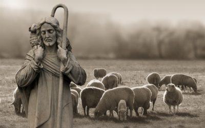 Homélie du quatrième dimanche de Pâques B
